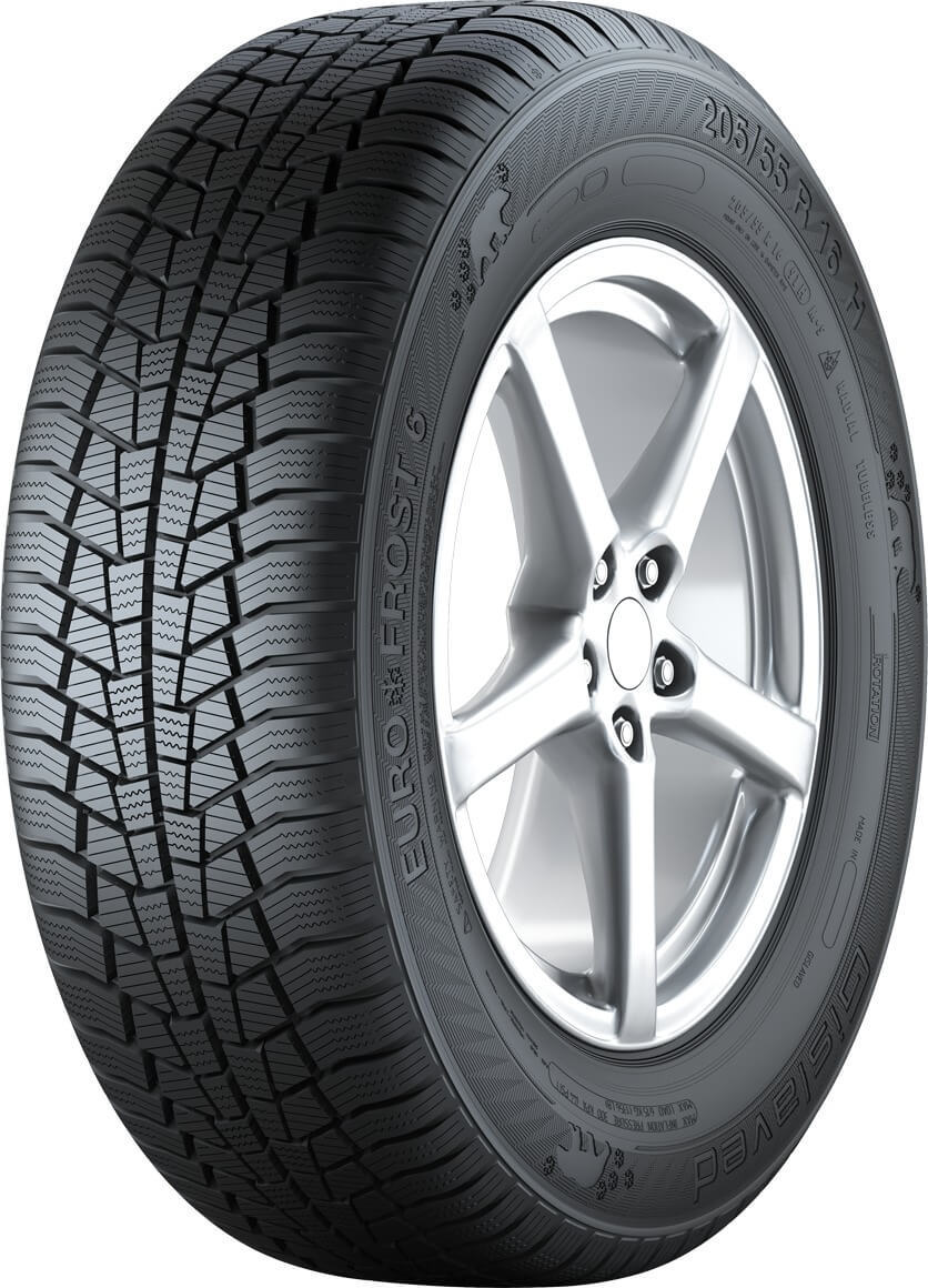 205/55R16 EURO*FROST 6 91T