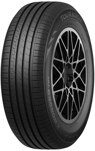 205/55R16 X WONDER TH1 94V XL