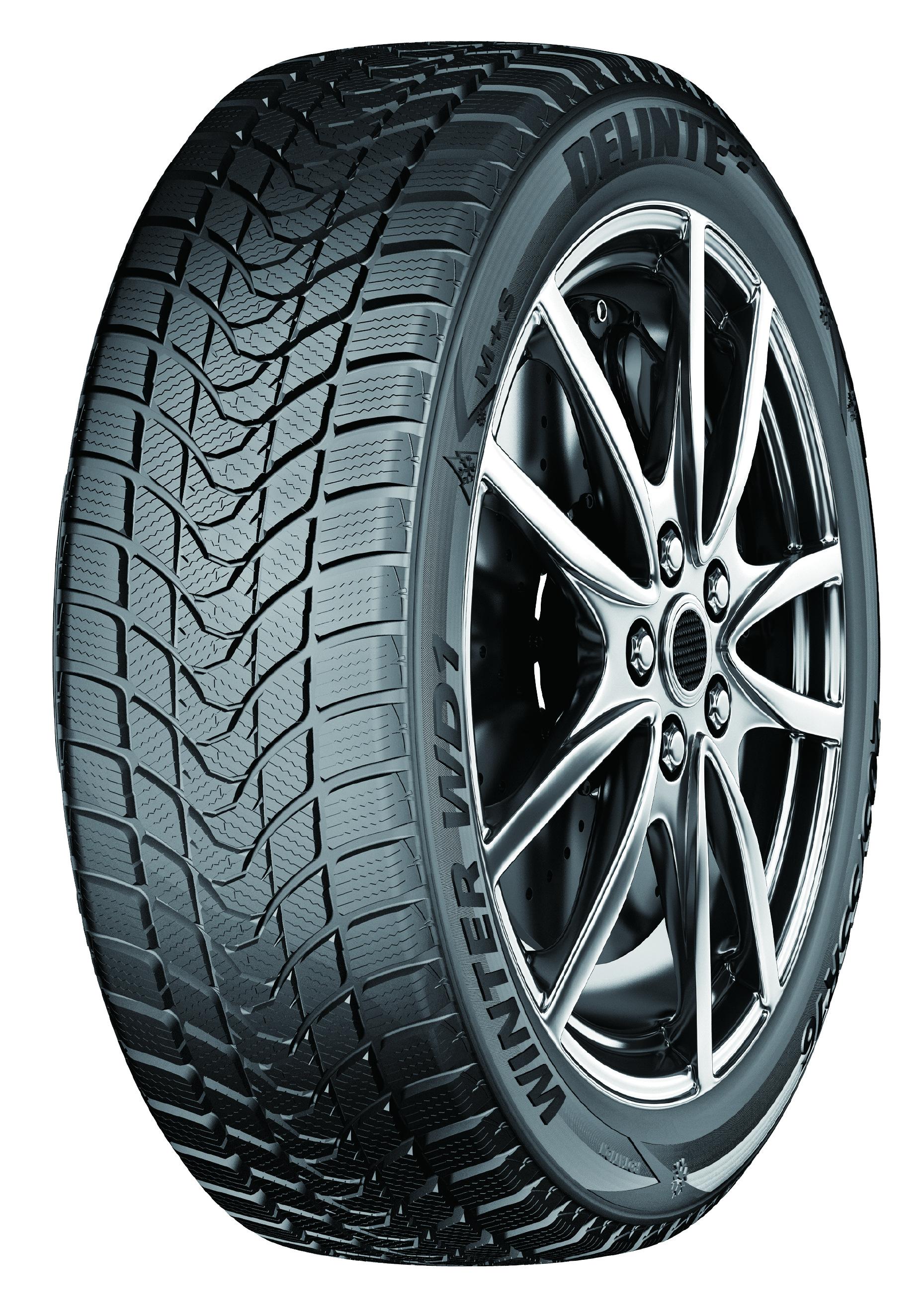 195/60R15 DELINTE WINTER...